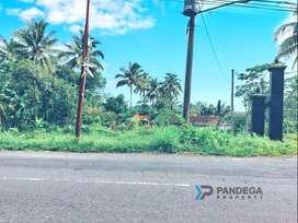 Jual Tanah 1383m2 Tepi Jl. Raya Turi Pakem Dekat Kampus UII Terpadu