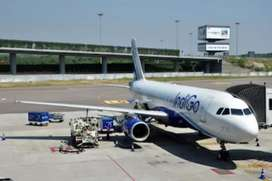 Urgently required in Indigo Airlines for male or female