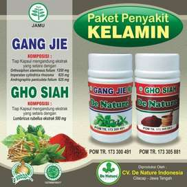 Obat Sipilis Kencing Nanah Gonore Dan Sakit Saat Kencing Herbal