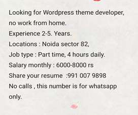 Wordpress theme developer (2-5 yr experience)