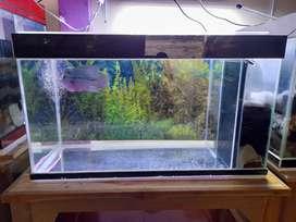 Aquarium uk.70*30*35