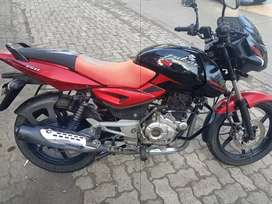 Pulsar 150. 2015. Single owner. Clear papers. Non accidental