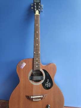 Showroom acoustic guitar Hertz ,Givsun, Ukulele etc
