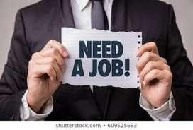I need job iam a accountant