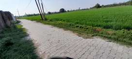 28 bigha Agriculture land sell in haridawar