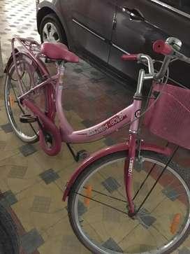 Ladis cycle