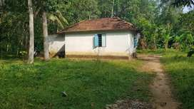 60 Cent Plot with small House for sale in Nooranad,Alappuzha