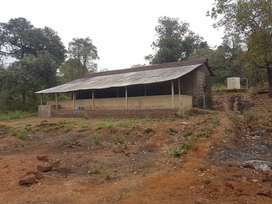 155000 sq mtrs of land with 10000 sq mtr plot of