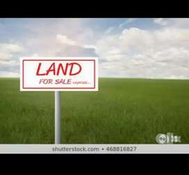 PLOT FOR SALE IN GILLICO,SECTORB115 MOHALI