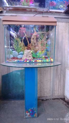 Fish tank  new piece