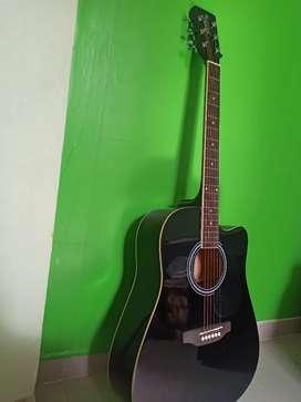 Santana Guitar perfect designed in Europe