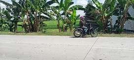 Tanah Murah Mangku Jalan Raya Banmati Dalangan Tawangsari Sukoharjo