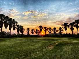 Luxury plots with 1000 acres Green Area