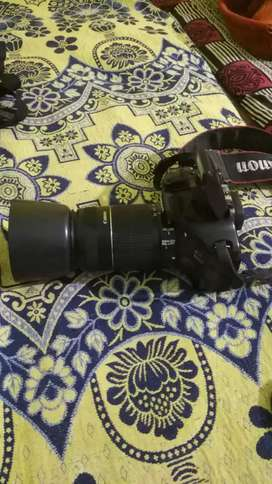 Canon 550D with 55-250 mm lense
