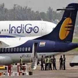 Patan - Indigo Airlines / All India Vacancy opened in Indigo Airlines