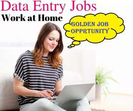 Data entry work home based join now laptop must contact me