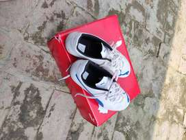 Puma Shoe size uk8 eu42