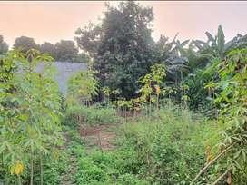 Jual Tanah Kavling di Cipayung Jakarta Timur