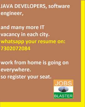 Software Engineer (IT all fields)