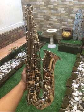 Alto Saxophone Ostrava Silver
