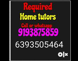 Home Tutor Required for class 12th Accounts