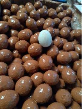 terlaris jual telur asin mentah