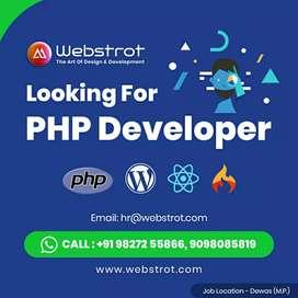 Wordpress and core PHP Developer