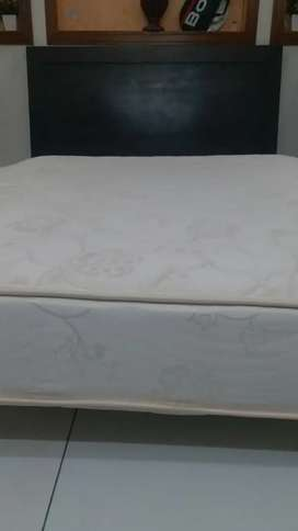 American Mattress, box and bed head
