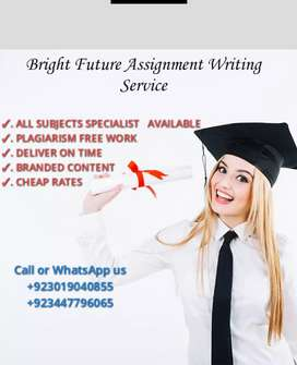 Bright future Assignment writing service