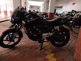 Black Pulsar 180 only 19500km run