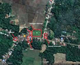 Lokasi SHM Murah