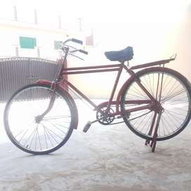 Bicycle in decent price
