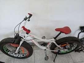 Sepeda Wimcycle Fatman sip!!!