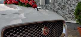 Luxury cars for rent wedding and other purposses