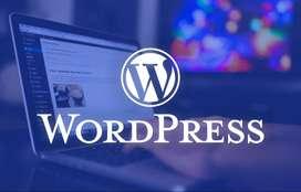 Urgent Requiremnet for Wordpress Developer
