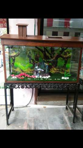 Aqurium all accessories and pets