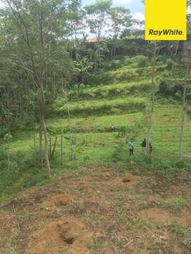 Dijual Tanah Perkebunan Wonosari Jolotundo Pasuruan