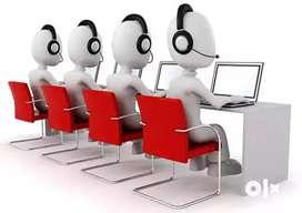 Customer Care Executive -Domestic call center