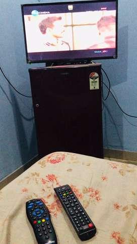 Room Partner needed