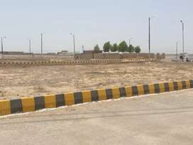 Taiser Town Phase 2 Hot Sector 11 ,40 paid Allotment