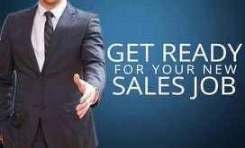 Sales Executive/Senior Sales Executive/Sales Manager