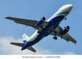 Hiring for ground staff in Indigo Airlines in this area
