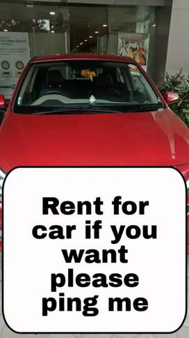 I am not selling my car we are giving rental purpose