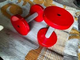 Fixed dumbbells Red