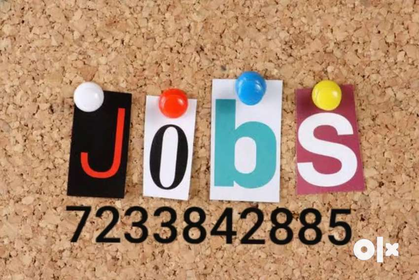 Limited seats opportunity for data entry job 0