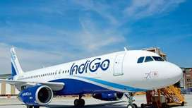 Required Ticket Executive for Udaipur Airport