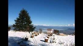 Freehold Plots for Cottage Resort Project in Mukteshwar, Uttarakhand