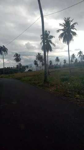 Tanah murah dekat pabrik cocacola bitung