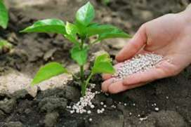 Fertilizer Industry Complete Plant Setup Production/Formulation/Market