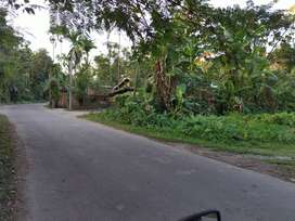 Available 3600 sq ft. Residential plot in Nagaon (Near Uriagaon Chowk)